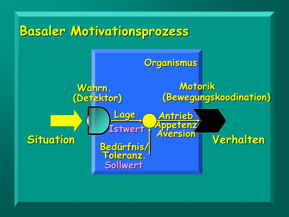 Basaler Motivationsprozess (Bewegungskoodination)