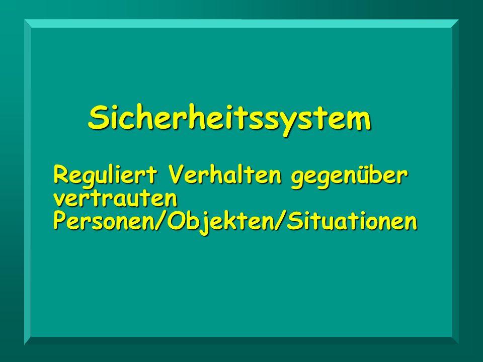 Sicherheitssystem Reguliert Verhalten gegenüber