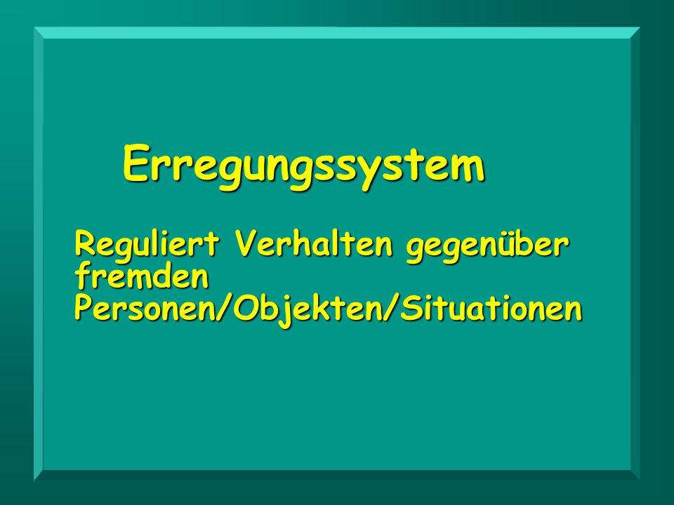 Erregungssystem Reguliert Verhalten gegenüber