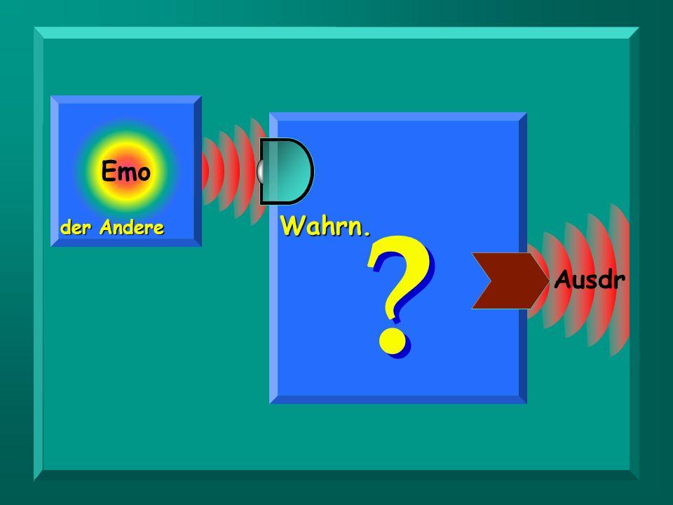 Emo Wahrn. der Andere Ausdr.