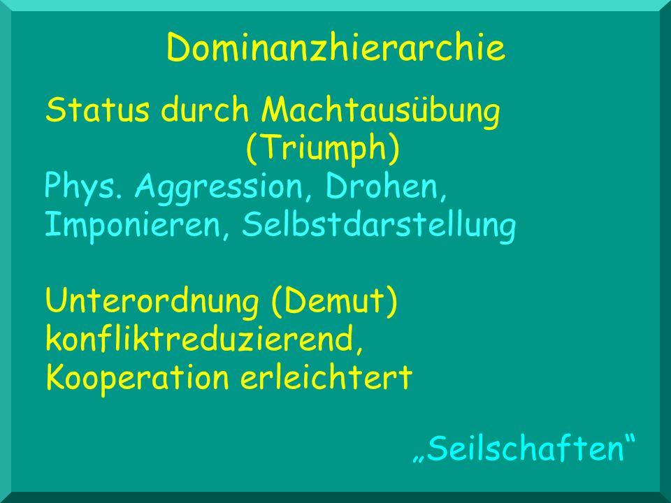 Dominanzhierarchie Status durch Machtausübung (Triumph) Phys. Aggression, Drohen, Imponieren, Selbstdarstellung.