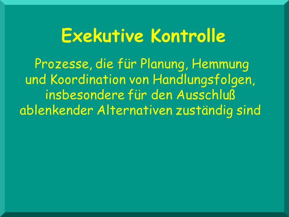 Exekutive Kontrolle
