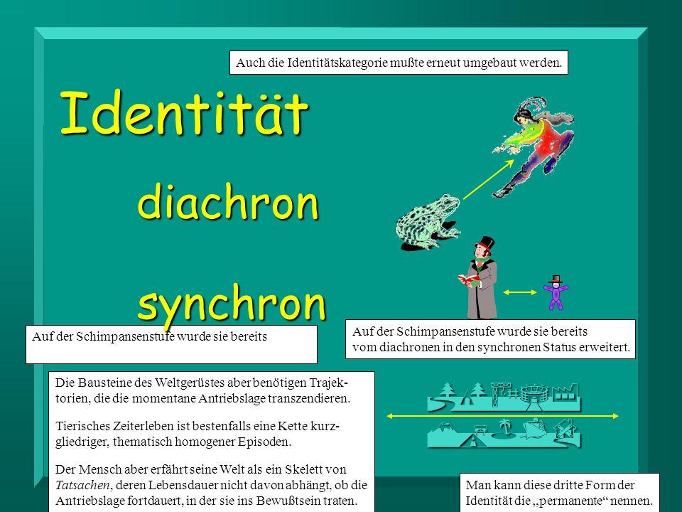 Identität diachron synchron permanent PQASF MKJTD