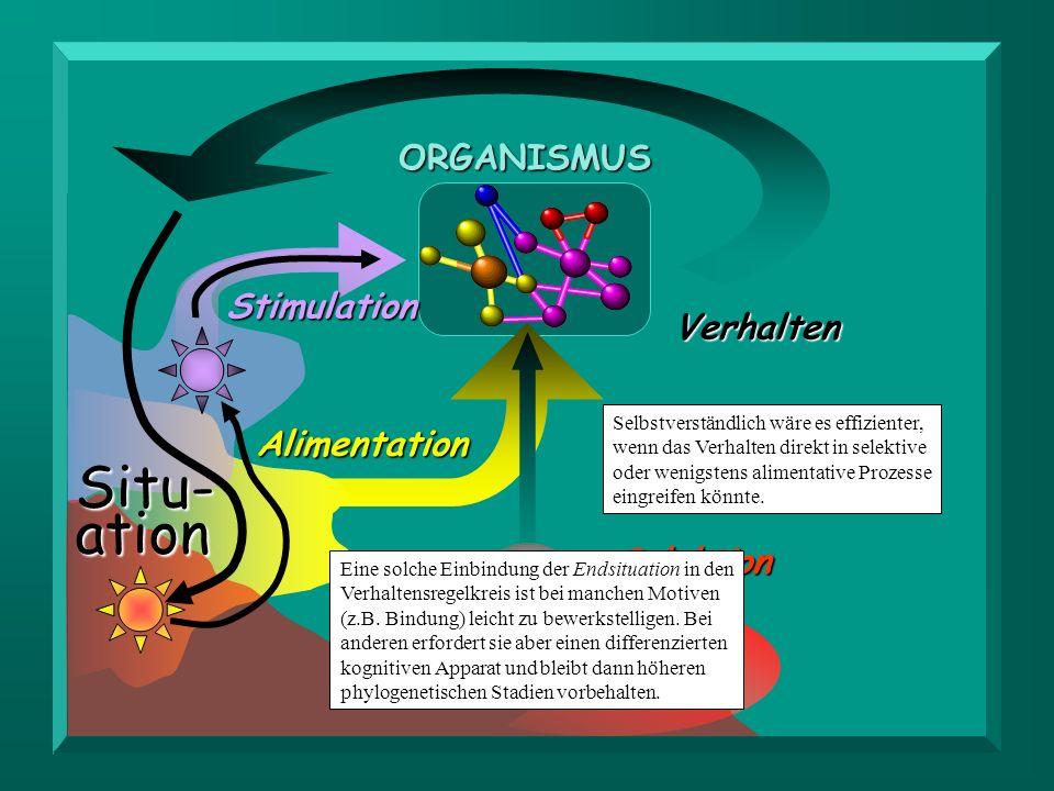 Situ- ation ORGANISMUS Stimulation Verhalten Alimentation Selektion