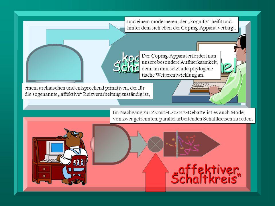 """working model Ich-Apparat Bewußtsein """"kognitiver Schaltkreis"""