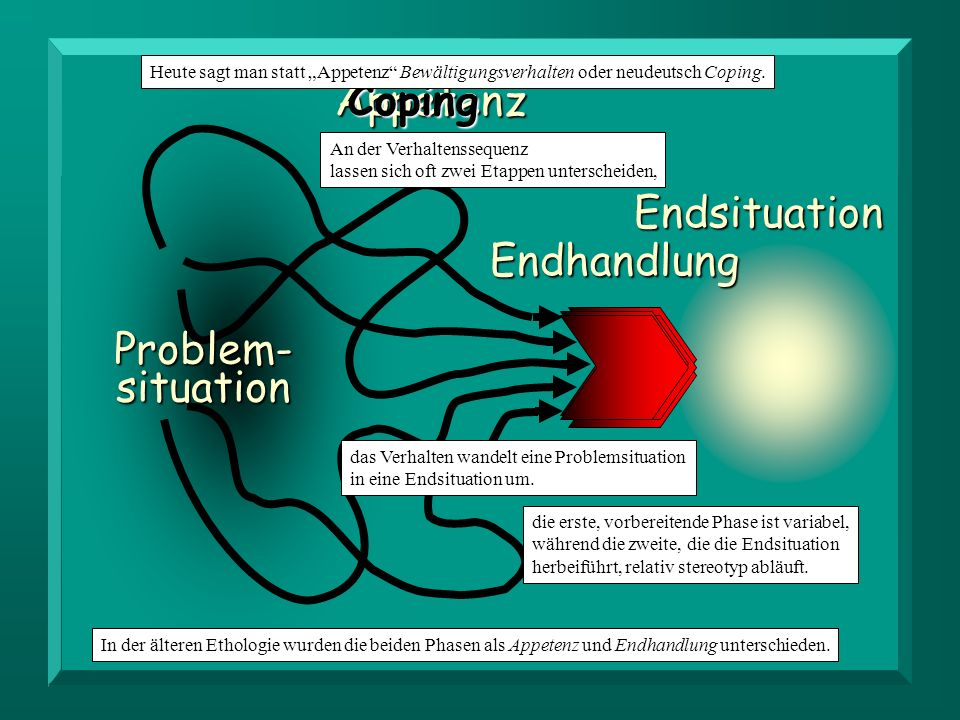 Appetenz Coping Endsituation Endhandlung Problem-situation