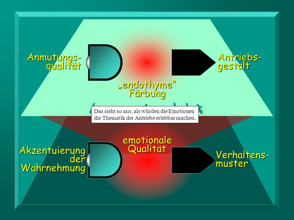 LERSCH McDOUGALL bewusst erlebt Anmutungs- qualität Antriebs- gestalt