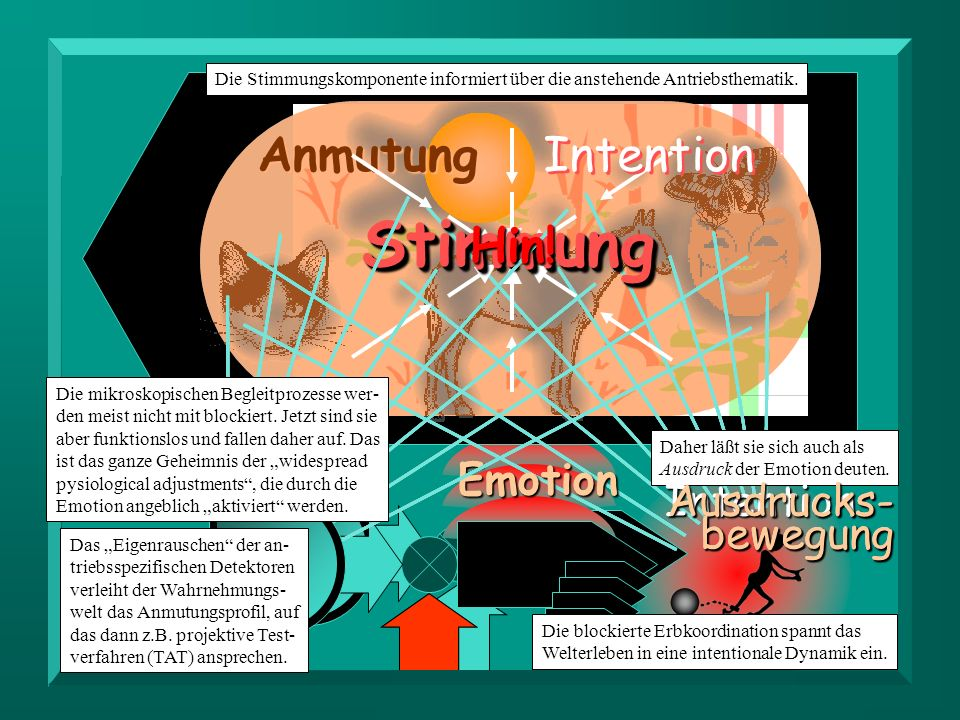 Stimmung Anmutung Intention Hin! Emotion Ausdrucks- bewegung
