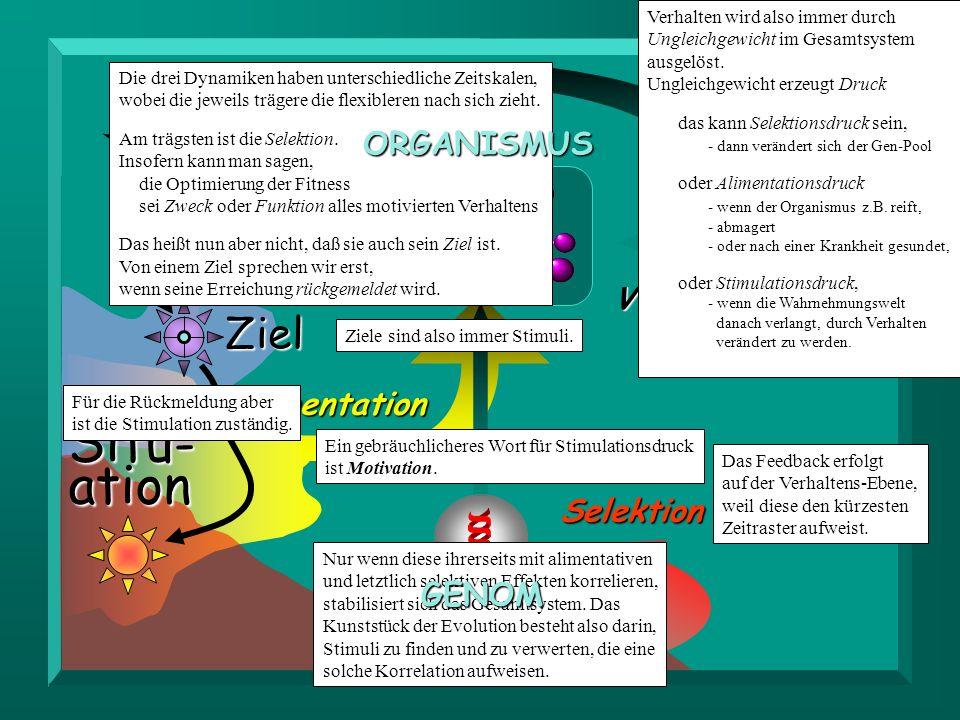 Situ- ation Ziel ORGANISMUS Stimulation Verhalten Alimentation