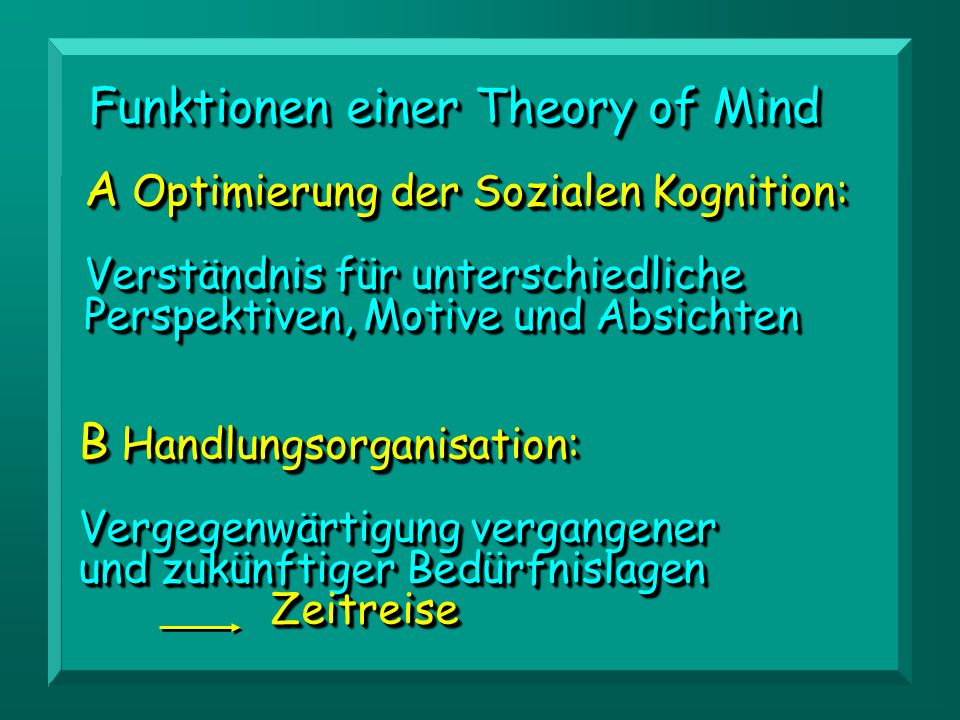 Funktionen einer Theory of Mind