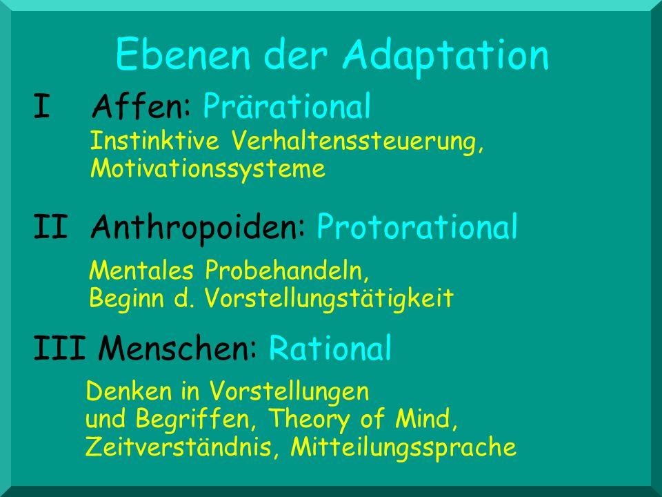 Ebenen der Adaptation I Affen: Prärational
