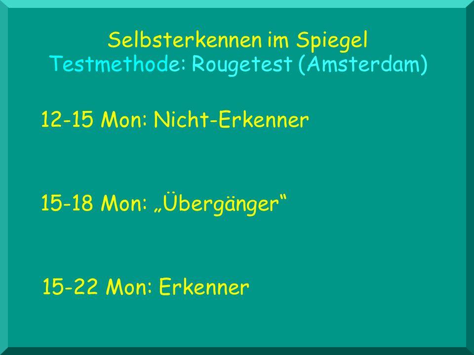 Selbsterkennen im Spiegel Testmethode: Rougetest (Amsterdam)