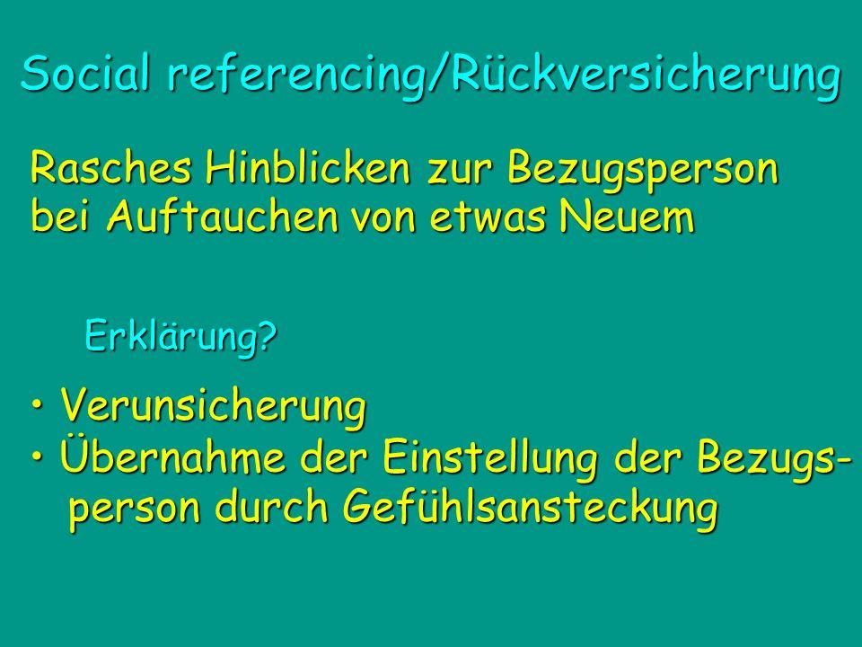 Social referencing/Rückversicherung