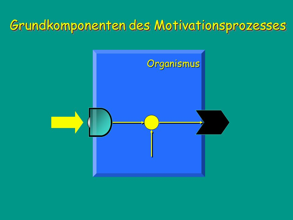 Grundkomponenten des Motivationsprozesses