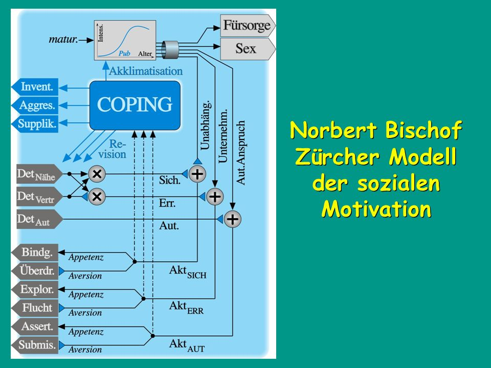 Norbert Bischof Zürcher Modell der sozialen Motivation