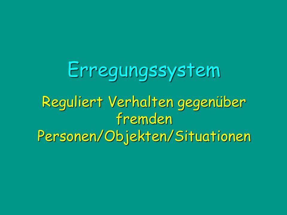 Reguliert Verhalten gegenüber fremden Personen/Objekten/Situationen