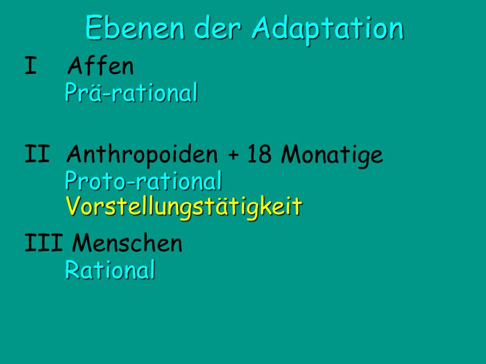 Ebenen der Adaptation I Affen Prä-rational + 18 Monatige