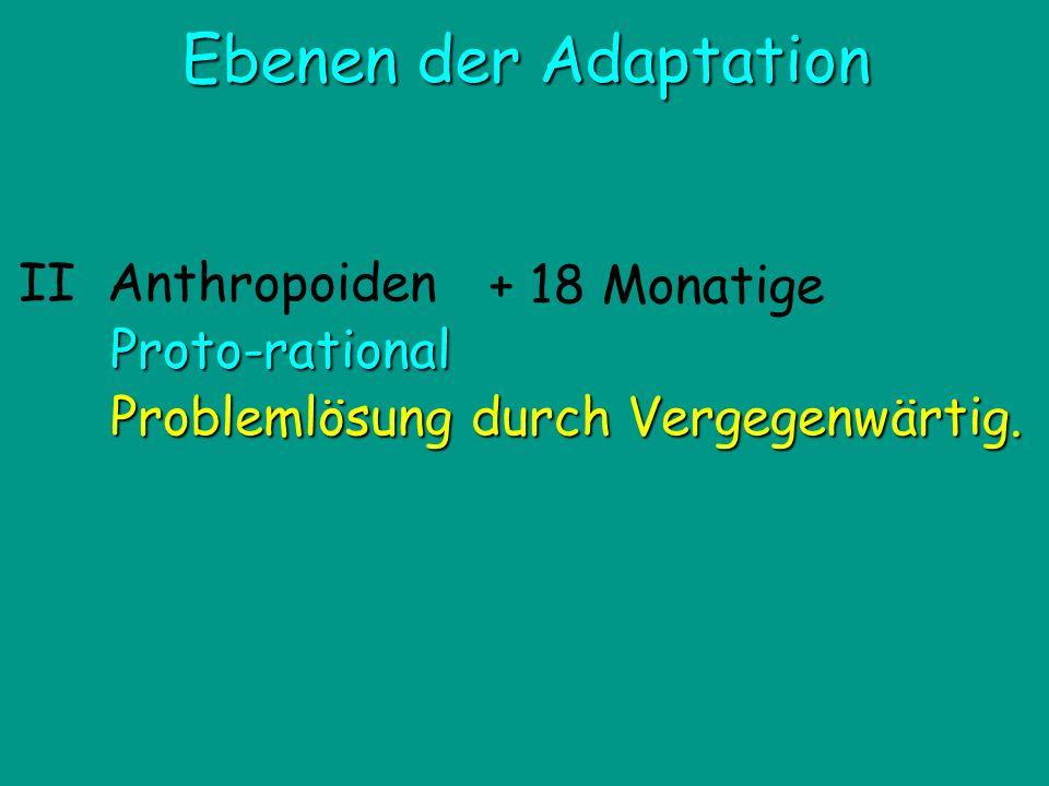 Ebenen der Adaptation + 18 Monatige II Anthropoiden Proto-rational