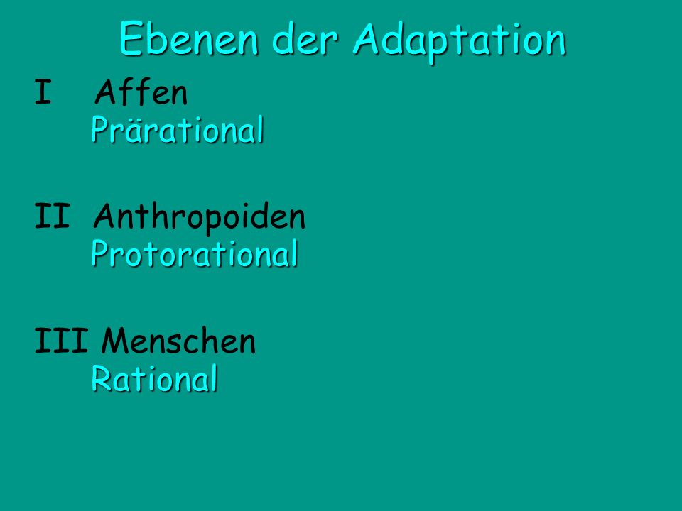 Ebenen der Adaptation I Affen Prärational II Anthropoiden