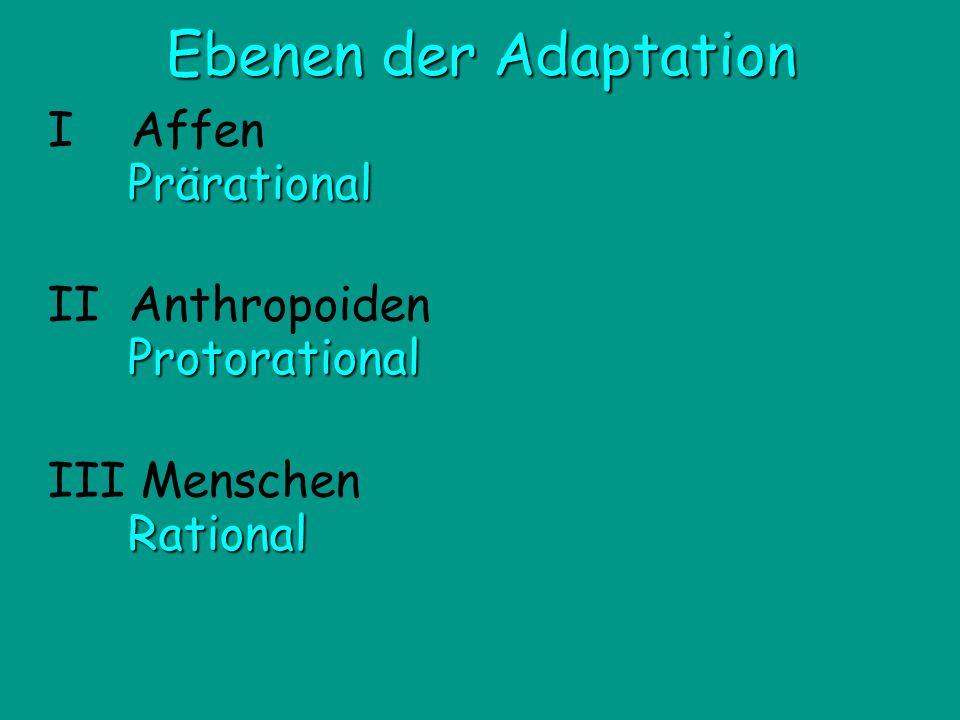 Ebenen der Adaptation I Affen Prärational II Anthropoiden