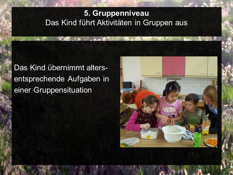 5. Gruppenniveau Das Kind führt Aktivitäten in Gruppen aus
