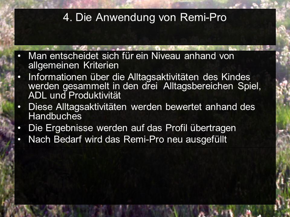 4. Die Anwendung von Remi-Pro