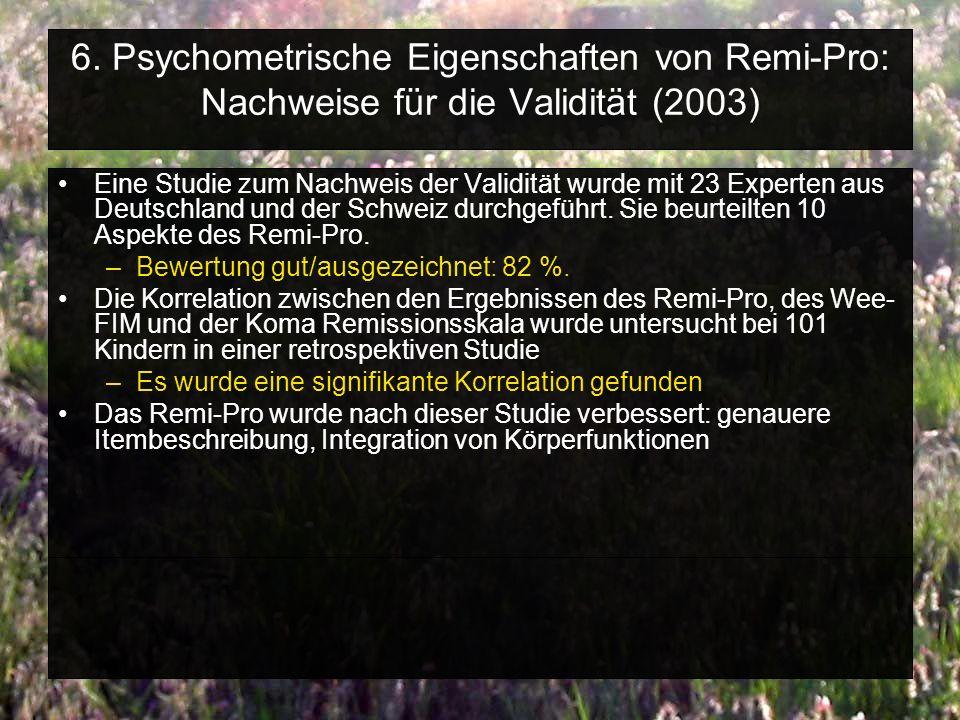 6. Psychometrische Eigenschaften von Remi-Pro: Nachweise für die Validität (2003)