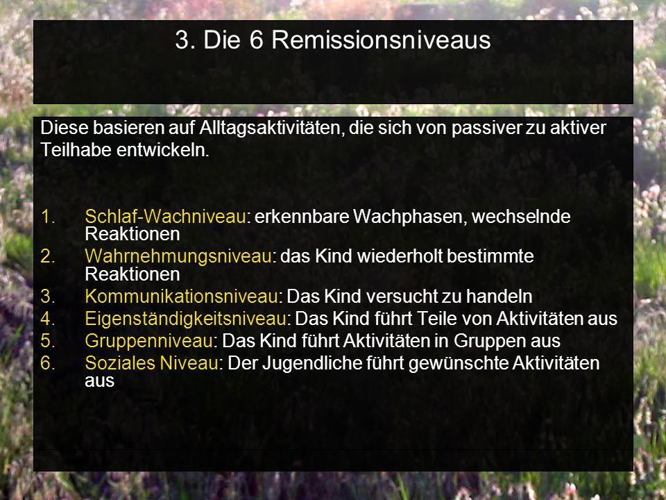 3. Die 6 Remissionsniveaus