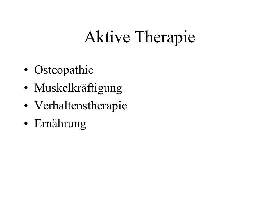 Aktive Therapie Osteopathie Muskelkräftigung Verhaltenstherapie