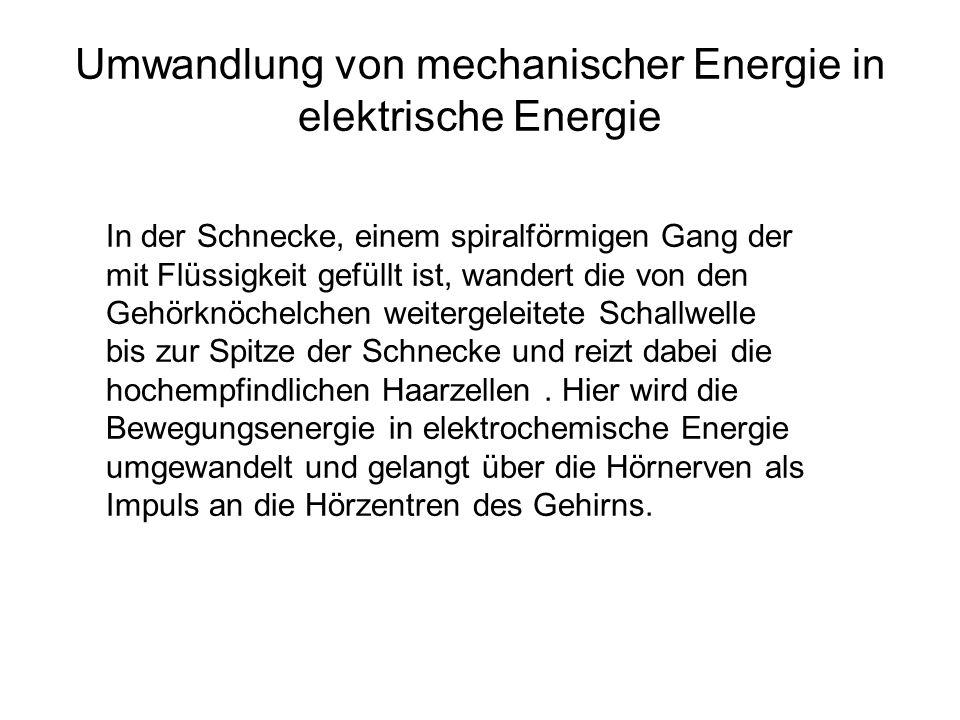 Umwandlung von mechanischer Energie in elektrische Energie