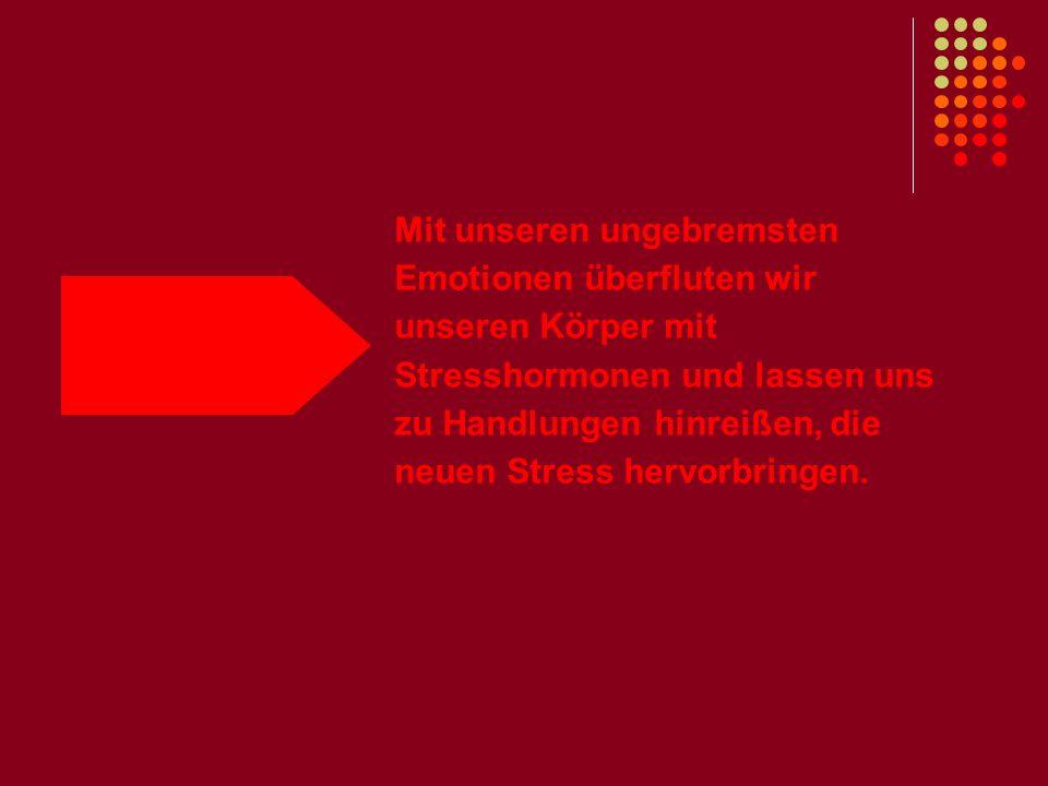 Mit unseren ungebremsten Emotionen überfluten wir unseren Körper mit Stresshormonen und lassen uns zu Handlungen hinreißen, die neuen Stress hervorbringen.