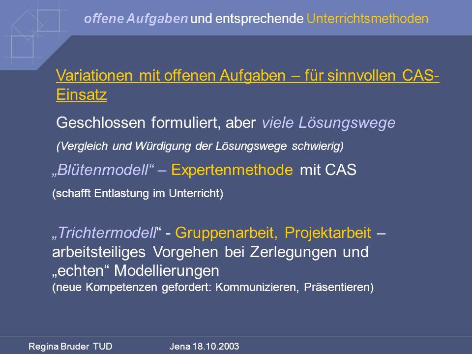 Variationen mit offenen Aufgaben – für sinnvollen CAS-Einsatz