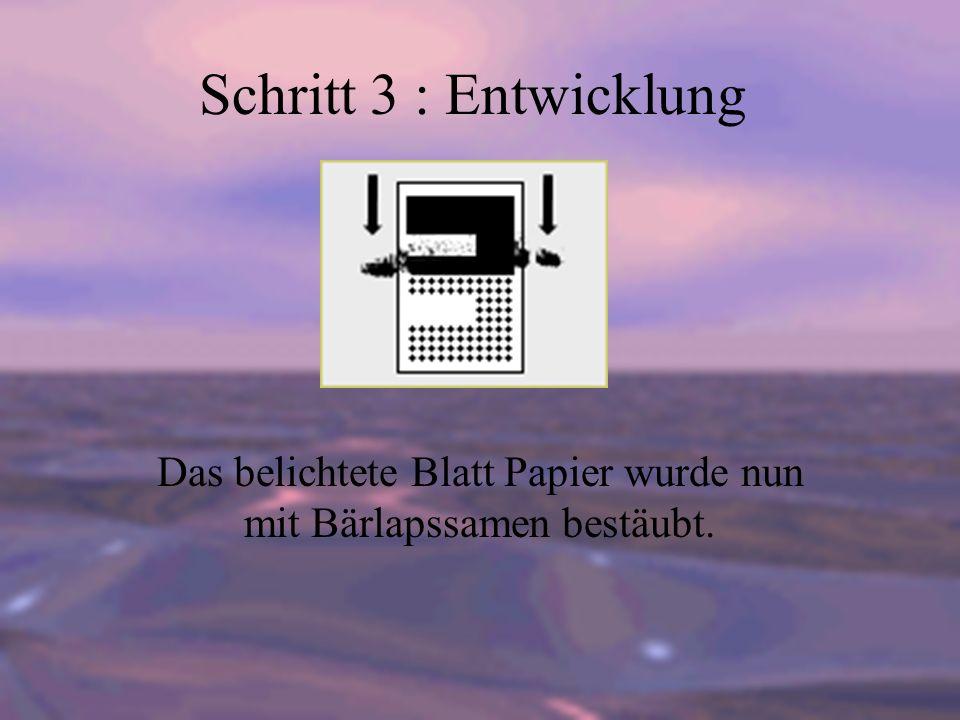 Das belichtete Blatt Papier wurde nun mit Bärlapssamen bestäubt.