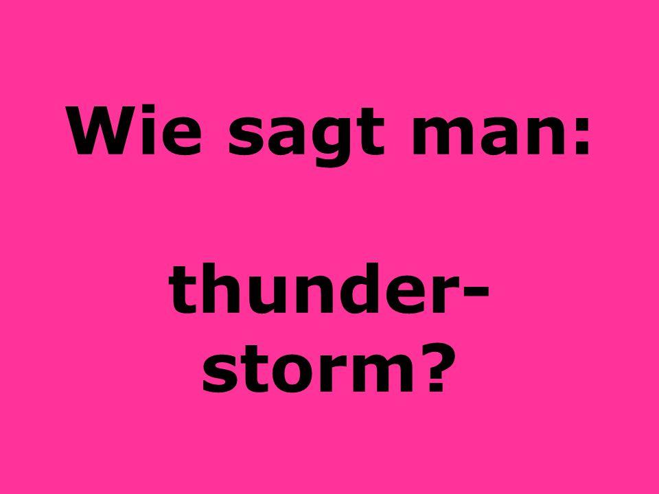 Wie sagt man: thunder-storm