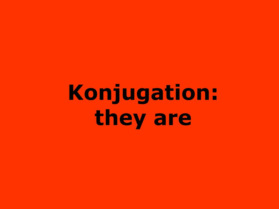 Konjugation: they are
