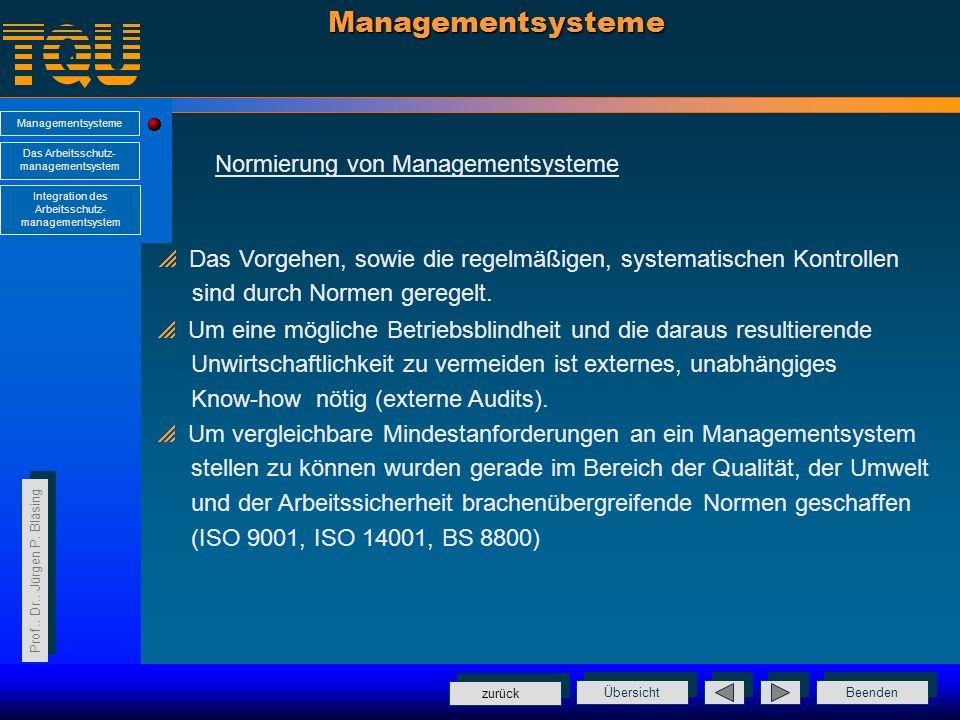 Managementsysteme Normierung von Managementsysteme