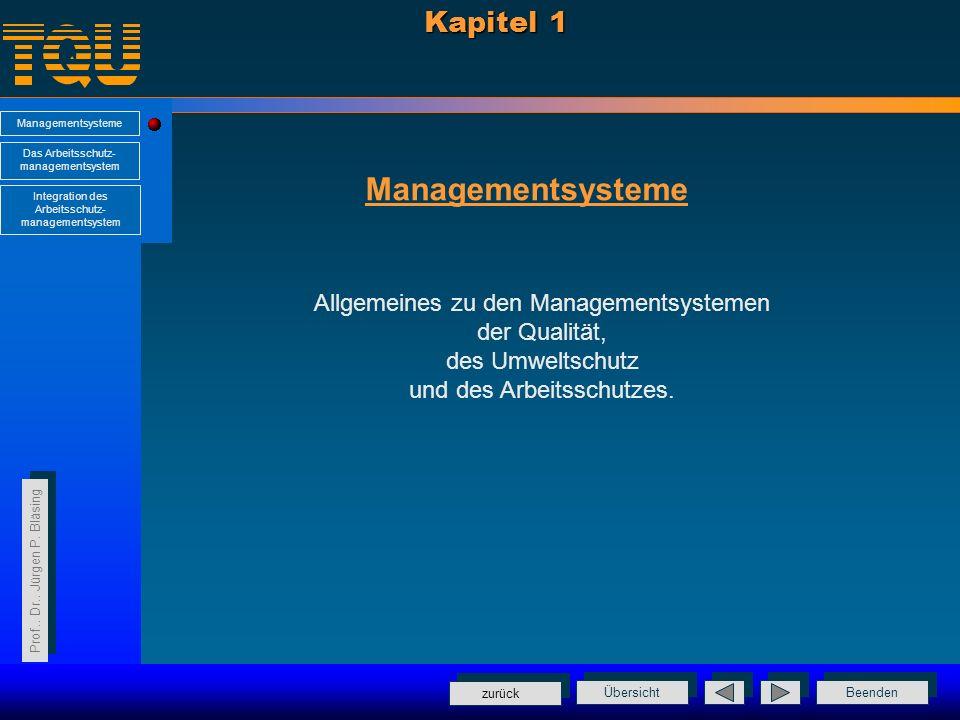 Managementsysteme Kapitel 1 Allgemeines zu den Managementsystemen