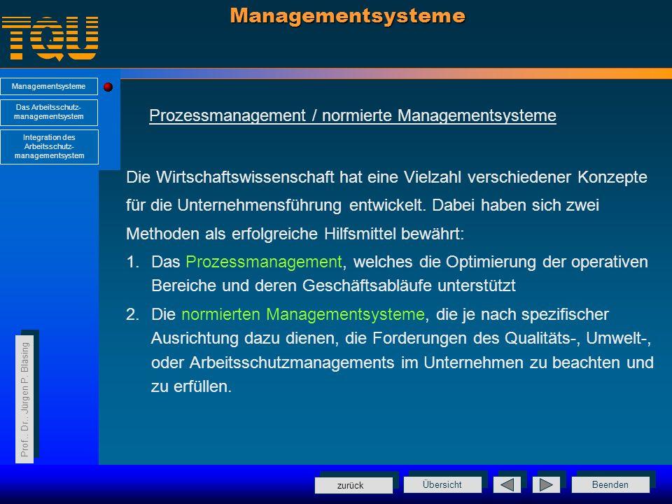 Managementsysteme Prozessmanagement / normierte Managementsysteme