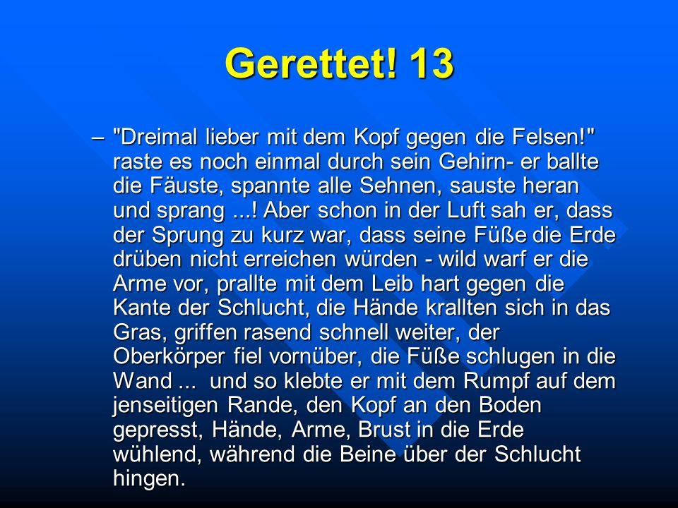 Gerettet! 13