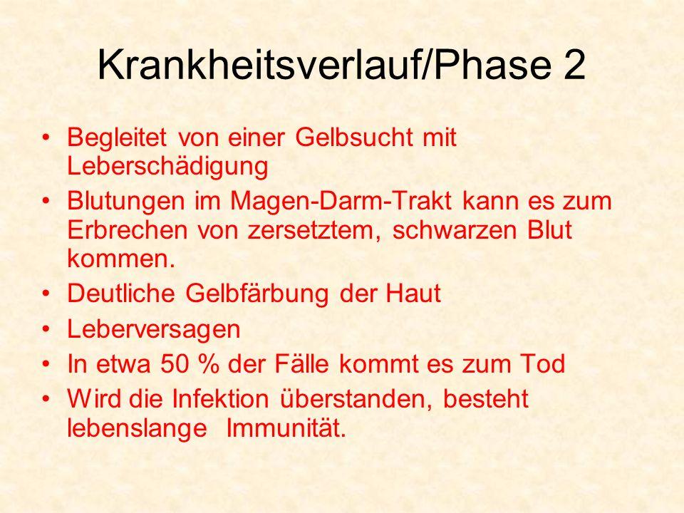 Krankheitsverlauf/Phase 2