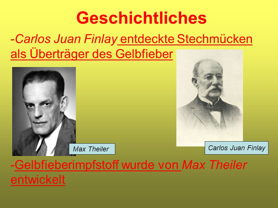 Geschichtliches Carlos Juan Finlay entdeckte Stechmücken als Überträger des Gelbfieber. Gelbfieberimpfstoff wurde von Max Theiler entwickelt.