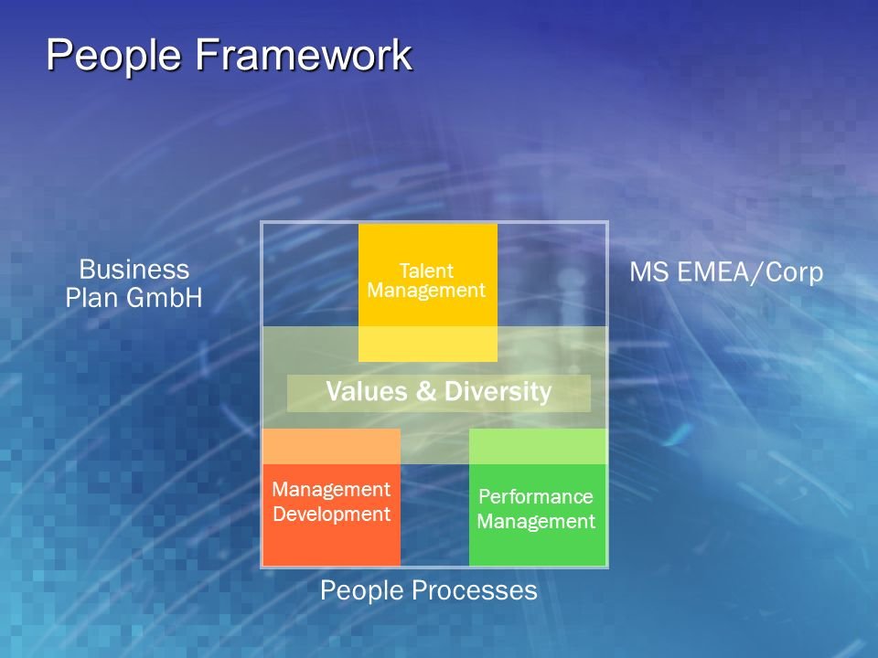 People Framework Business MS EMEA /Corp Plan GmbH Values & Diversity