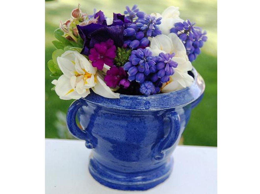 schöne Blumen im Topf