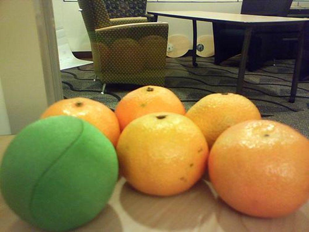 Am Freitag fraß sie sich durch fünf Apfelsinen.