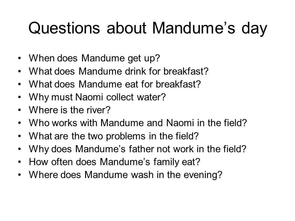 Questions about Mandume's day