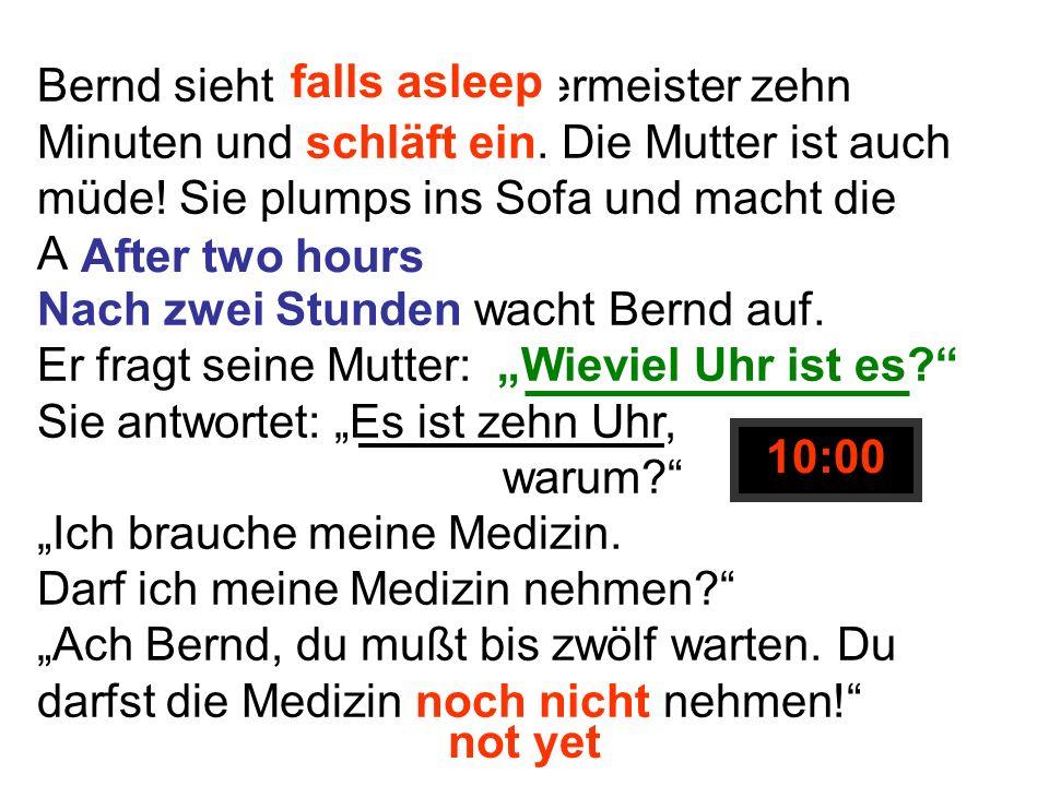 Bernd sieht Bob der Bauermeister zehn Minuten und schläft ein