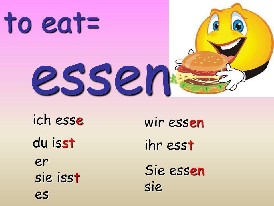 essen to eat= ich esse wir essen du isst ihr esst er sie isst es