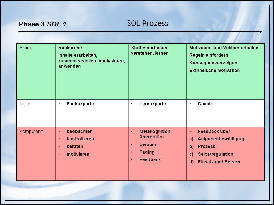 SOL Prozess Phase 3 SOL 1 Aktion Recherche: