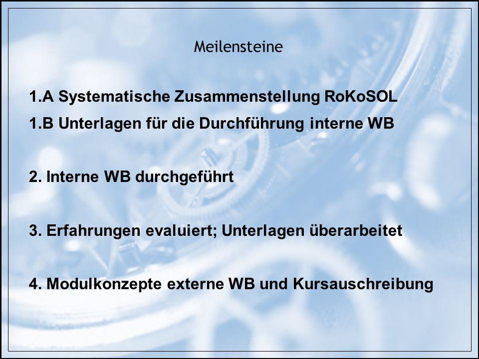 Meilensteine 1.A Systematische Zusammenstellung RoKoSOL. 1.B Unterlagen für die Durchführung interne WB.