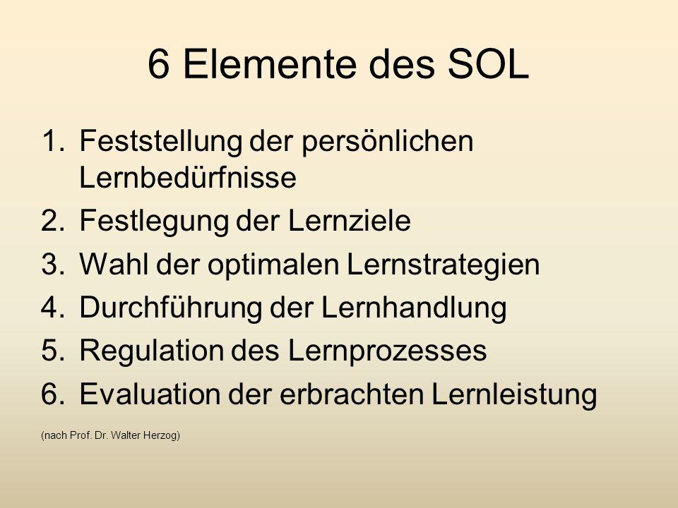 6 Elemente des SOL Feststellung der persönlichen Lernbedürfnisse